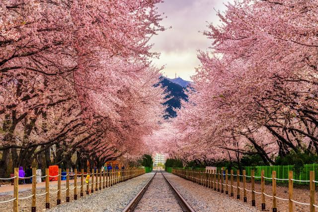 Những địa điểm hấp dẫn ở Hàn Quốc