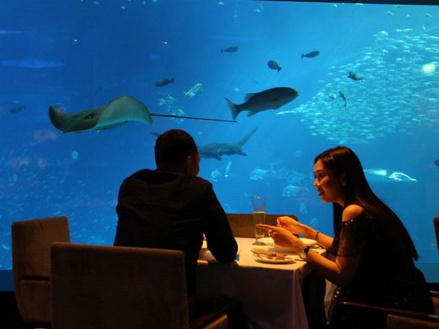 Singapore điểm du lịch dành cho người yêu động vật