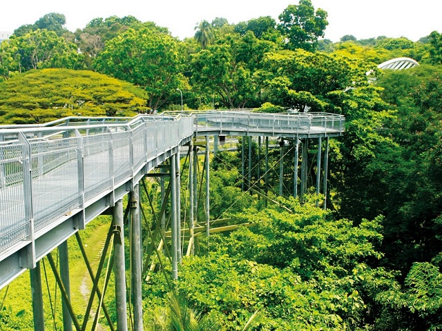 Dạo quanh các điểm đến du lịch sinh thái ở Singapore